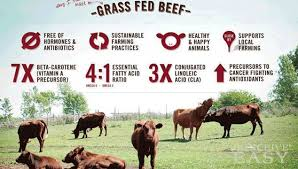 grass finished beef chart